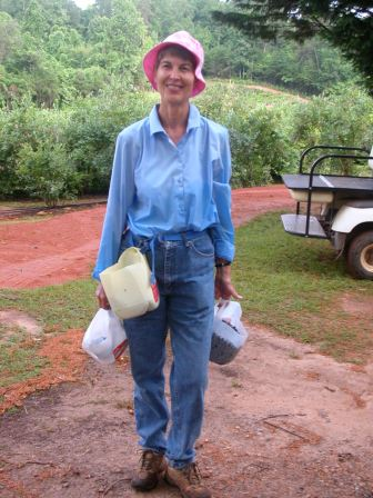 Blueberry Picker Amy Fendley is dressed appropriately for hot weather.
